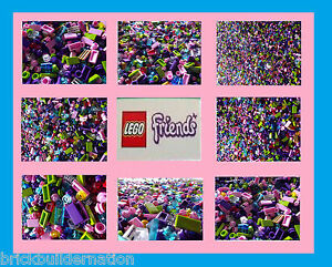 200 GIRL FRIENDS NEW LEGO LEGOS SMALL DETAIL PIECES FROM HUGE BULK LOT @ RANDOM