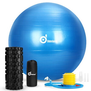 5 In 1 Foam Roller Kit & Muscle Roller Stick Massage Balls for Muscle Therapy