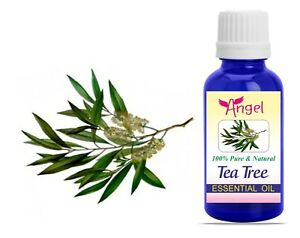 Tea Tree Essential Oils 100% Natural Aroma Therapy Oil 3ML to 1000ML
