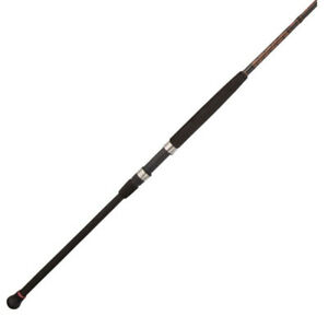 Penn Squadron II Surf Spinning Fishing Rod (9' 2pc)
