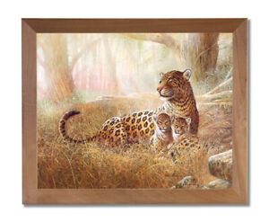 Tropical Leopard Cat Family Animal Wildlife Wall Picture Honey Framed Art Print