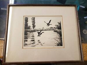 HANS KLEIBER SIGNED Etching 'A Couple of Mallards' Framed