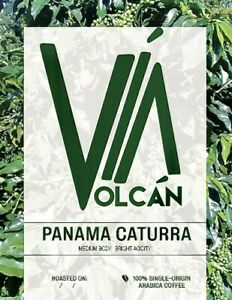 Panama Via Volcan Unroasted Green Coffee Beans SHB Caturra - 10 lbs