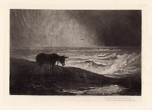Emotional 1800s MACWHIRTER Etching quot;Donkey in the Wind amp; Rainquot; Framed SIGNED COA $784.00