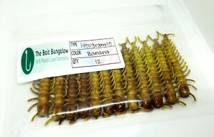 12 COUNT 3quot; Hellgrammite Bass Soft Plastic Bait MADE IN USA