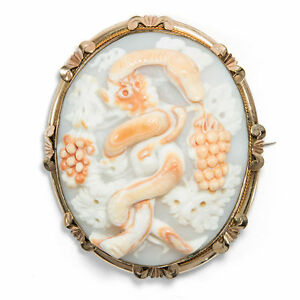 UNUSUAL SHELL CAMEO BROOCH Around 1860 Snake Serpent GEM CAMEO