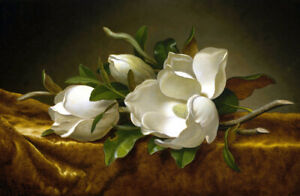 Still life white Magnolias Oil painting Art HD Giclee Printed on canvas L2449 $9.99