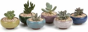 Small Ceramic Succulent Planter Pot with Drainage Hole Set of 6