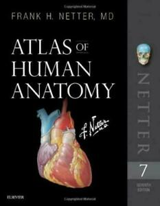 Atlas of Human Anatomy, US 7th Edition Netter Basic Science 9780323393225