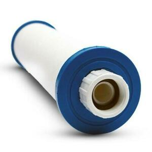Pleatco Spa and Pool Sediment Filter Cartridge PPS2100