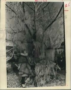 1970 Press Photo Woman Observes the Weather Under Large Tree hcx26197 $19.99