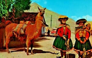 Pisac Peru Native Girls on the Way To The Market Llama 1957 Chevy Postcard