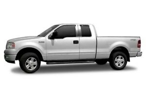 Dawn Painted Body Side Molding for 2009-2014 Ford F-150 in Ingot Silver Metallic