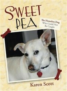 Sweet Pea: The Homeless Dog Who Could Not Be Caught (Hardback or Cased Book)