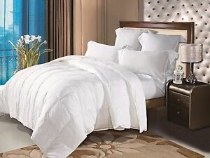 New Natural Comfort Allergy-Shields TM Luxurious Down Alternative Comforter