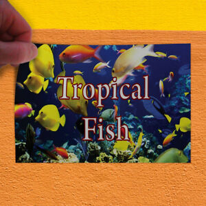 Decal Sticker Tropical Fish #1 Style E Business Fish Outdoor Store Sign Blue