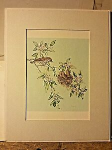 Portal Publications Young In Mountain Laurel Jill Fogelsong Lithograph BFO11 39 $15.00