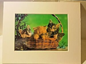 Portal Publications 1988 Four In A Basket Richard Stacks Lithograph CP033 22 $14.00