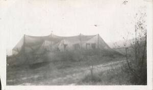 1945 WWII GIs ETO photo No 11 GIs under large netting $3.99
