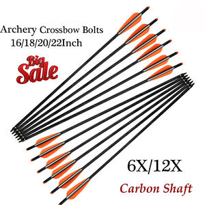 Archery Carbon Shaft Arrows125 Grain Replaceable Field Point Tip for Hunting