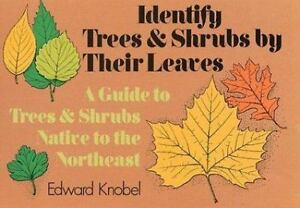 Identify Trees and Shrubs by Their Leaves