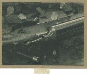 Hunting gun with bullets shells close up vintage art photo by T. Evans