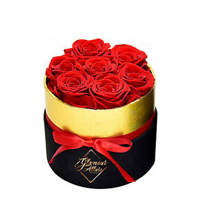 Handmade Preserved Real Roses in a Gift Box 7 roses Preserved Flowers