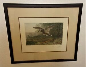 Archibald Thorburn Colored Wildlife Bird Chromolithograph A Labour of Love $120.00