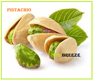 Pistachios Roasted Salted USA Origin In Shell We Got Nuts in HS Code 080252 $2.99