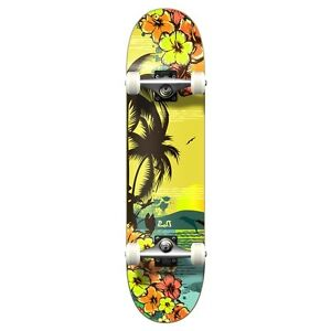 Yocaher Graphic Tropical Day Complete Skateboard
