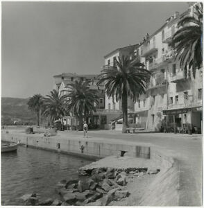 Photo Willy Maywald Argentique Corse Calvi Vers 1950