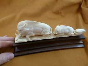 (wart-10) Mama + baby hogs Warthog of shed ANTLER figurine Bali detailed carving