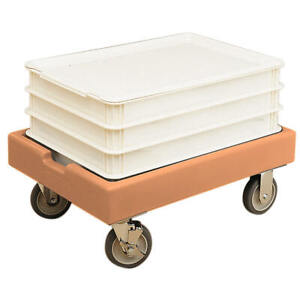 CAMBRO 19 7 8quot; X 27 7 8quot; DOLLY 300 LB CAPACITY COFFEE BEIGE CD1826PDB 157 $481.91