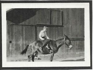 2 antique photos California woman in high heel shoes sits side saddle on horse