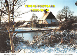 L043531 Nazeing Common. Saint Clare Hospice Trust. David Hobbs. Lithographic of GBP 5.75