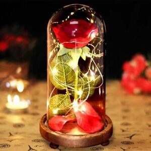 Rose LED Light Flower Glass Dome Any Occasion Girlfriend Wife Gift Ornaments