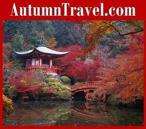 Autumn Travel .com Groups Tours Events Parties  Beach Australia Japan Mexico URL