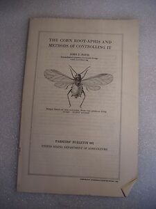 1925 The Corn Root Aphis Farmers#x27; Bulletin #891 US Dept Agriculture $1.00