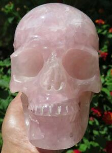 5LB 13OZ Fantastic Natural Rainbow Pink Rose Quartz Crystal Carving Art Skull