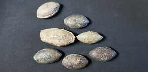 Lot of Greek and Roman PB Sling Bullet. Circa 4th-1st century BC