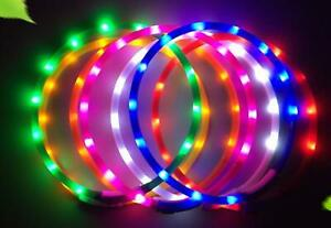 DOT LED TUBE RECHARGEABLE GLOW COLLAR dog pet safety light-up flashing SIZE-ABLE