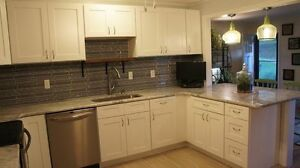 Stunning White Shakers Custom Layouts available RTA Cabinets 14ft