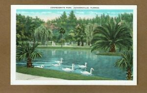 Jacksonville FL Florida Confederate Park Swans on water. $5.95
