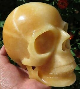 5LB 7OZ Fantastic Natural Lemon Calcite Crystal Carving Art Skull