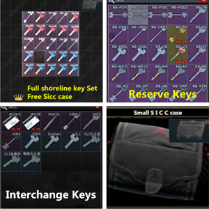 Escape. From.Tarkov Roubles SICC Case Keycards Reserve Keys 0.12.9 NEW WIPE E FT $34.99
