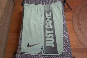 Nike Dri Fit Shorts JUST DO IT Green Loose Fit $10.00