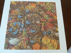 BEV DOOLITTLE Brand new SPIRIT TAKES FLIGHT hand signed and numbered $83.99