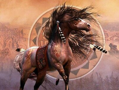 CANVAS PRINT NATIVE PAINTED WAR HORSE FEATHERS SOUTHWEST BLANKET ART LARGE