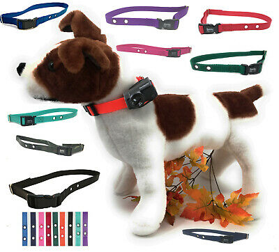 PETSAFE® Compatible WIRELESS NYLON REPLACEMENT COLLAR