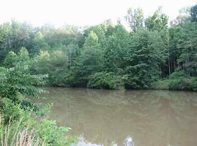 LAKEFRONT  Fully Wooded  Half Acre- Lot      LAND in S-W- TN Land